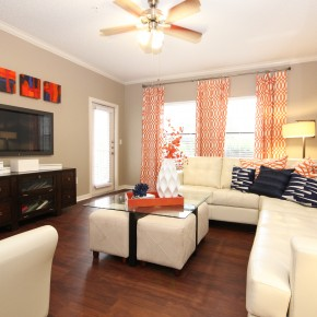Living room at Lincoln Melia Medical Center Apartments in Houston