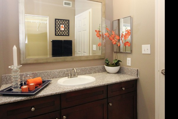 Bathroom at Lincoln Melia Medical Center Apartments in Houston